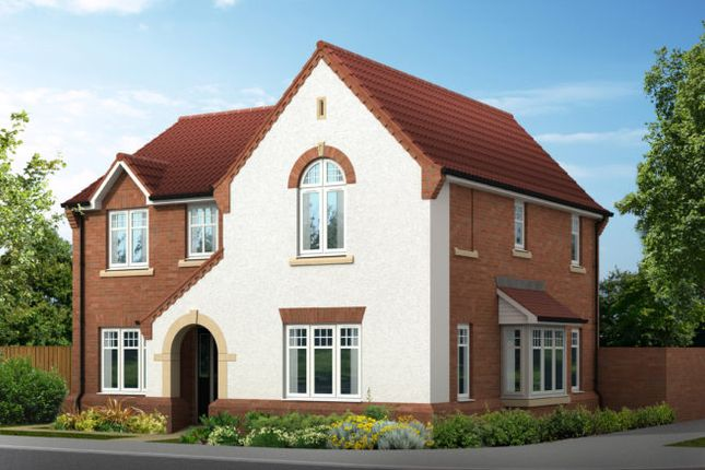 """Thumbnail Detached house for sale in """"The Salcombe V1 Contemporary"""" at Doublegates Avenue, Ripon"""