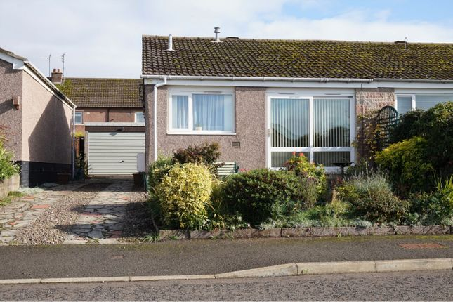 Thumbnail 2 bed semi-detached bungalow for sale in Millhill, Dundee