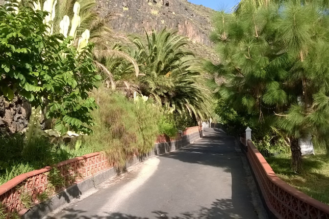 Thumbnail Detached bungalow for sale in Los Gigantes, Tenerife, Canary Islands, Spain