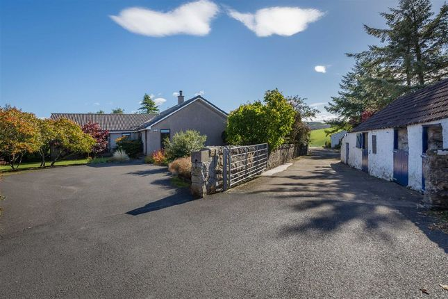 Thumbnail Bungalow for sale in Newbigging Bank, Newbigging, Auchtertool