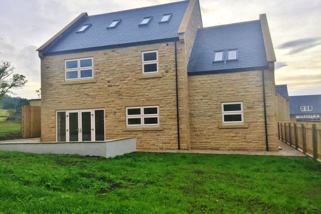 Thumbnail Detached house for sale in Lydgate Lane, Wolsingham, Bishop Auckland