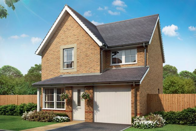 """Thumbnail Detached house for sale in """"Cheadle"""" at Tenth Avenue, Morpeth"""