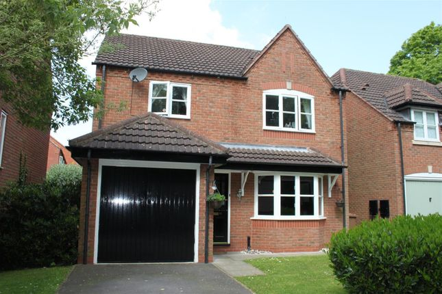 Thumbnail Detached house for sale in Maple Drive, Aston-On-Trent, Derbyshire