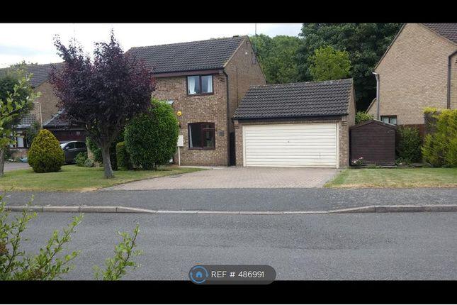 Thumbnail Detached house to rent in Dove Close, Towcester