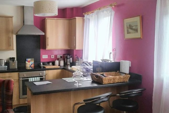 Thumbnail Flat to rent in Pottery Terrace, Newport