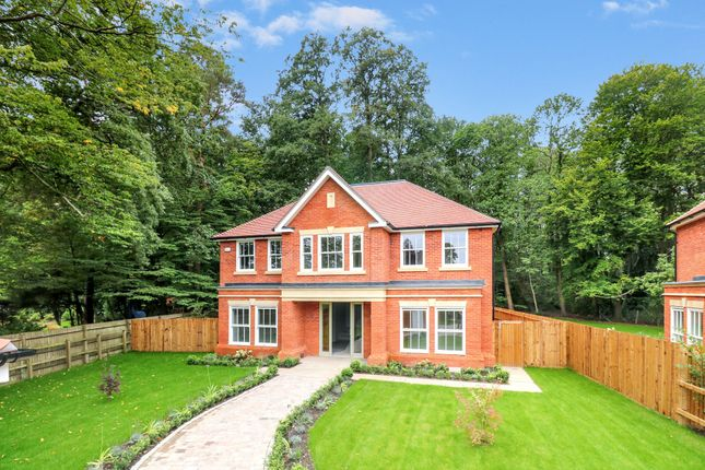 Thumbnail Property for sale in The Covert, Ascot