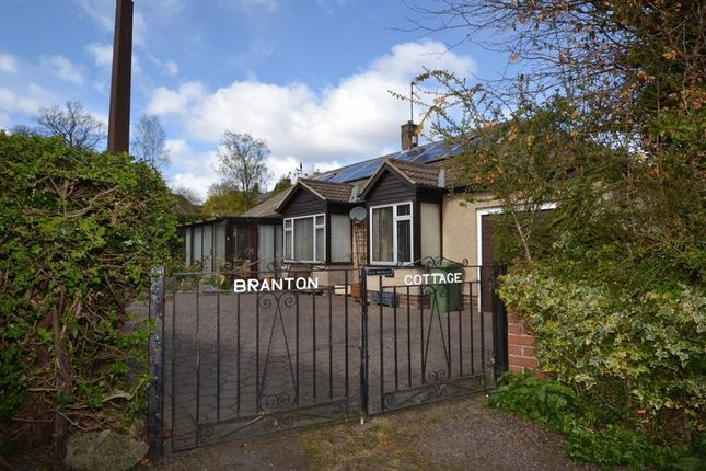 Thumbnail Detached bungalow for sale in Percy Terrace, Alnwick