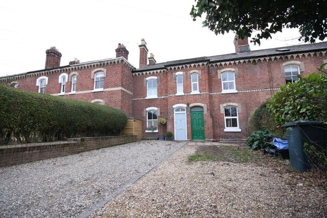 Thumbnail Terraced house to rent in Alton Terrace, Belle Vue Road, Shrewsbury