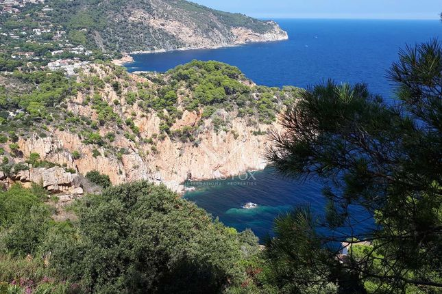 Thumbnail Land for sale in Spain, Costa Brava, Aiguablava, Cbr12877