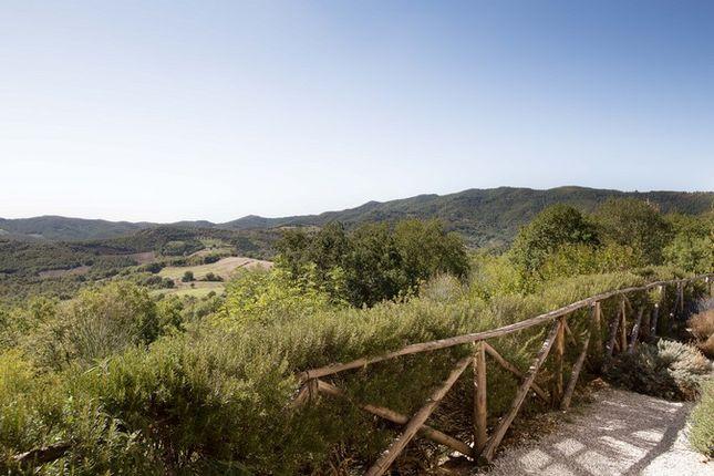 Img_2560 of Villa Martinazzi, Preggio, Umbertide, Umbria
