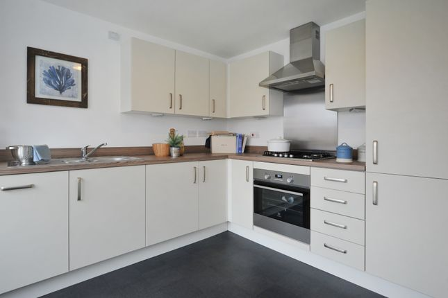 Thumbnail Semi-detached house for sale in Ashburton Road, Newton Abbot