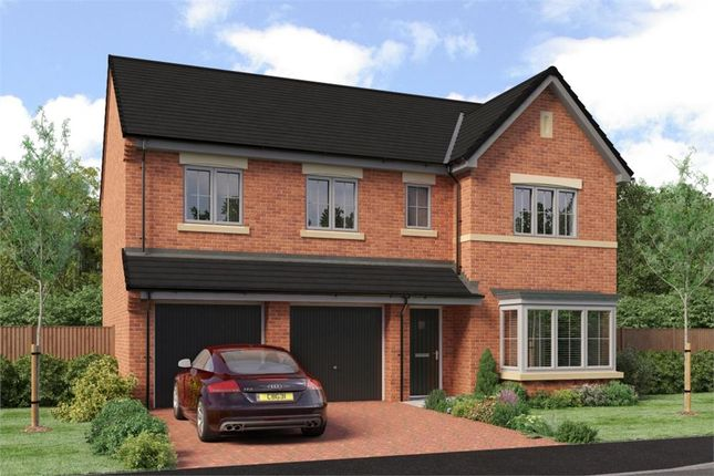 "Thumbnail Detached house for sale in ""The Buttermere"" at Low Lane, Acklam, Middlesbrough"