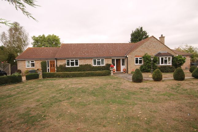 Thumbnail Detached bungalow for sale in Shrubbery Lane, Bedford