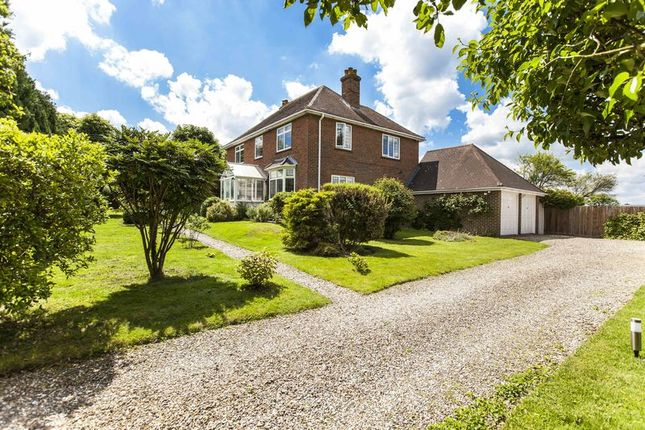 Thumbnail Detached house for sale in Aldermaston Road, Sherborne St. John, Basingstoke