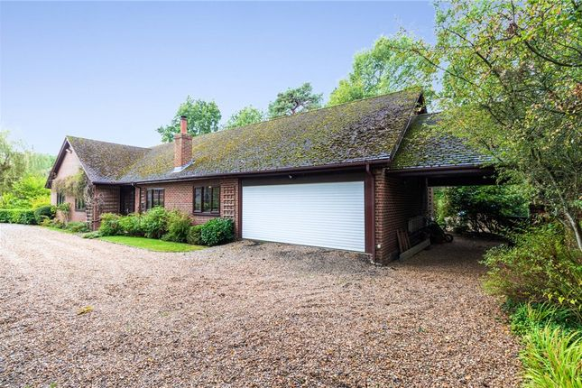 Thumbnail Bungalow for sale in Nine Mile Ride, Finchampstead, Wokingham