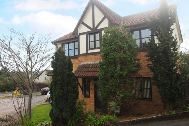 Thumbnail Detached house for sale in Mulberry Close, Paignton