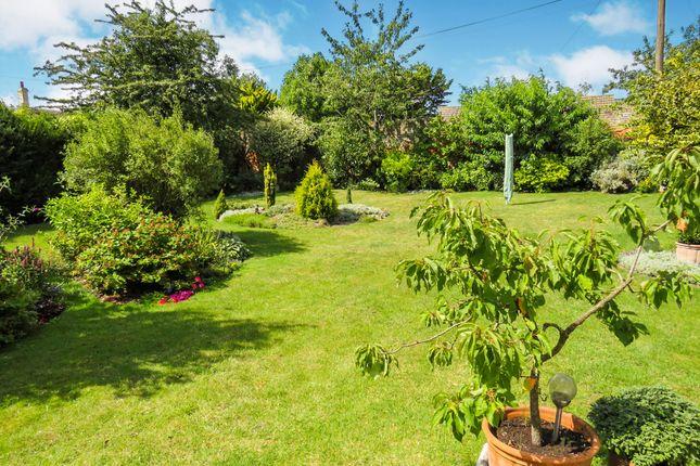 Thumbnail Detached bungalow for sale in West Park Farm Close, Ickburgh, Thetford