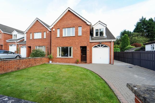 Thumbnail Detached house for sale in Parkvue Manor Gilnahirk Park, Gilnahirk, Belfast