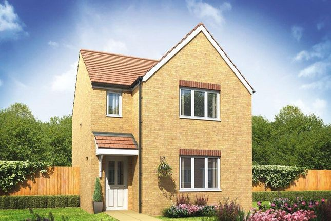 Thumbnail Detached house for sale in Plot 201 Hatfield, Cardea, Stanground, Peterborough