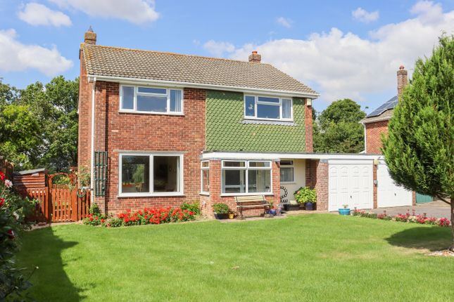 Thumbnail Detached house for sale in South Close, Alresford