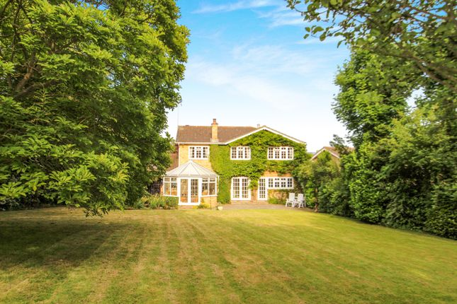 Thumbnail Detached house for sale in The Gattens, Rayleigh, Essex
