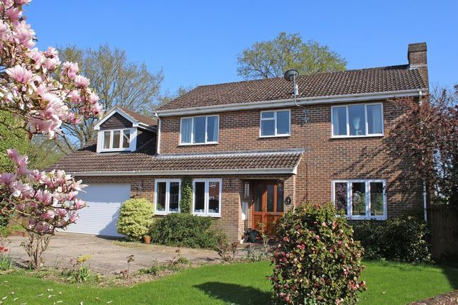 Thumbnail Detached house for sale in Fairway Gardens, Rownhams, Southampton