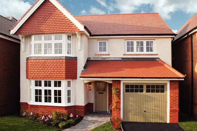 Thumbnail Detached house for sale in 53 The Oxford - Chilton Waters, Straight Drove, Bridgwater, Somerset