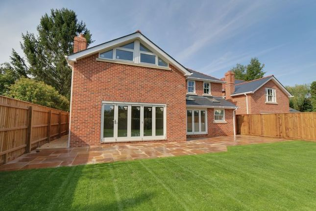 Thumbnail Detached house for sale in Market Street, Fordham, Ely