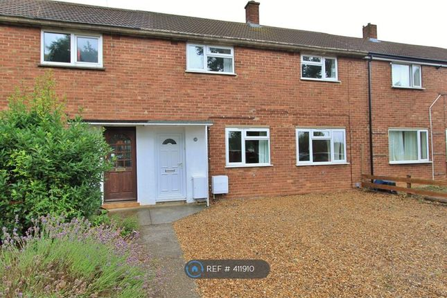 Thumbnail Terraced house to rent in Davy Road, Cambridge