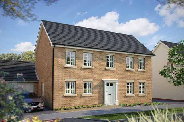 "Thumbnail Detached house for sale in ""The Montpellier"" at Harvest Rise, Shefford"