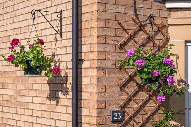 Vendors Summer Photos