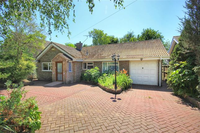 Thumbnail Detached bungalow for sale in Wells Hall Road, Great Cornard, Sudbury