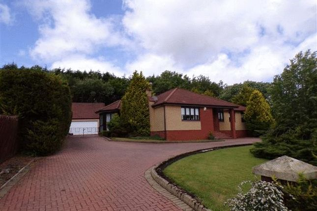 Thumbnail Detached house for sale in Bridge End, Shotts