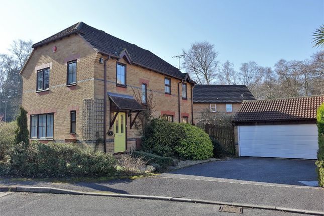 Thumbnail Detached house for sale in Moorland Close, Dibden Purlieu, Southampton