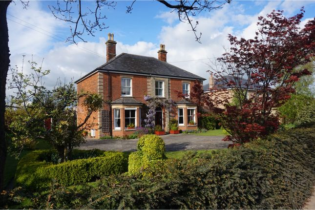 Thumbnail Property for sale in Norwich Road, Watton