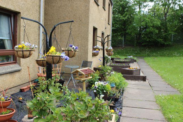 Thumbnail Studio to rent in Lochbrae Drive, Rutherglen, Glasgow