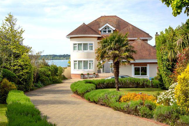 Thumbnail Detached house for sale in Dorset Lake Avenue, Lilliput