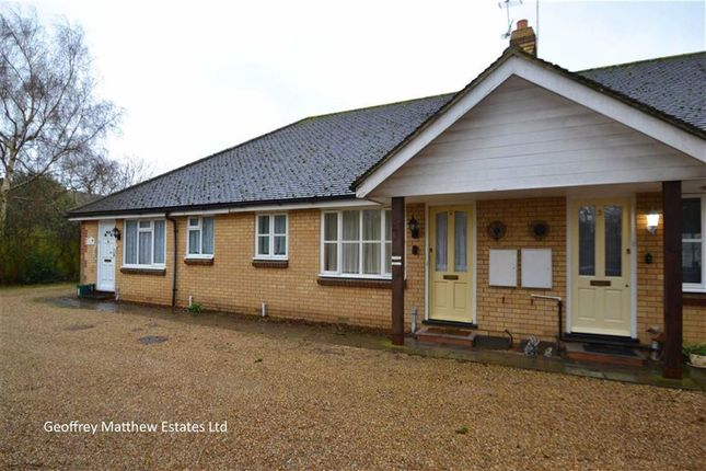 Thumbnail Bungalow for sale in Potter Street, Harlow, Essex