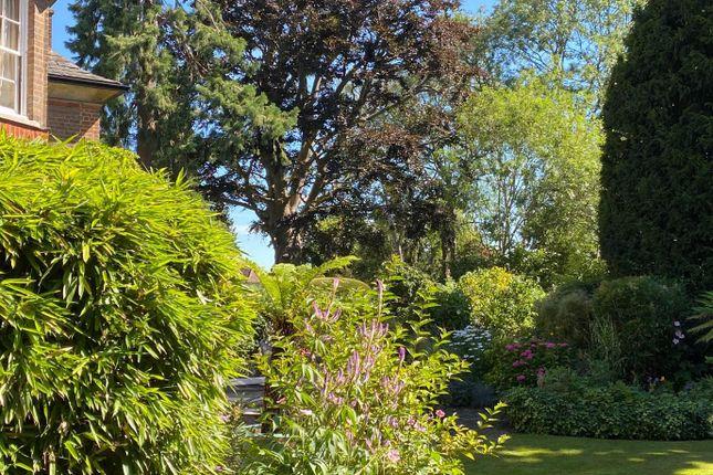 Garden Trees of Stratford Road, Watford WD17