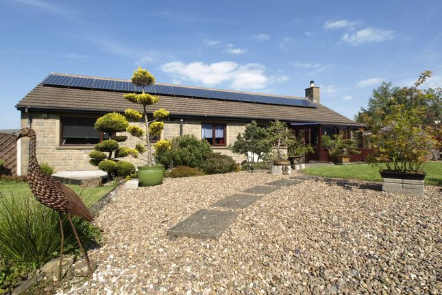 Thumbnail Detached bungalow for sale in Lower Haigh Head, Hoylandswaine, Sheffield
