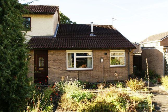 Thumbnail Bungalow to rent in Painters Way, Two Dales, Matlock, Derbyshire