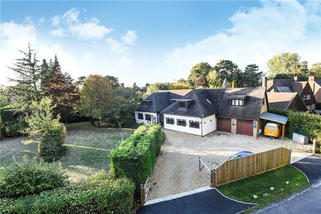 Thumbnail Detached house for sale in Pages Croft, Wokingham, Berkshire