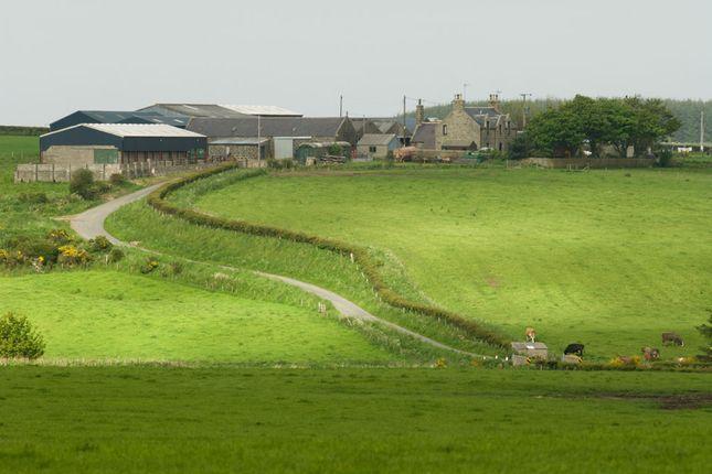 Thumbnail Farm for sale in Strichen, Fraserburgh
