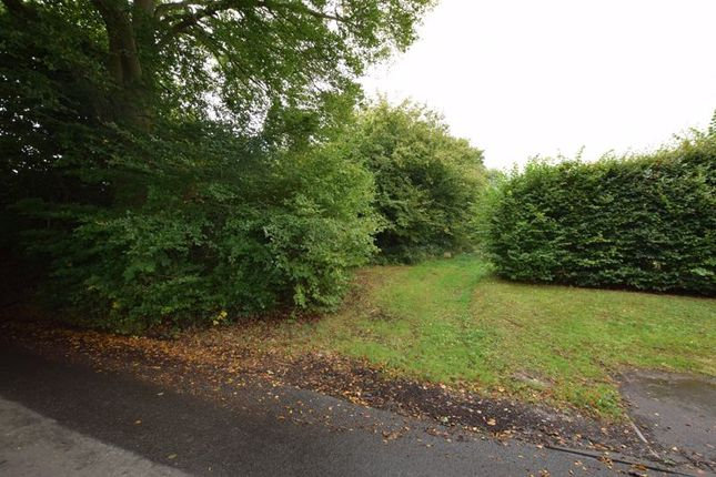 Photo 24 of With 4.58 Acres - Dunsells Lane, Ropley, Hampshire SO24