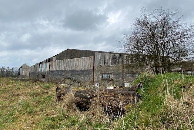 Thumbnail Land for sale in Talgarreg, Llandysul