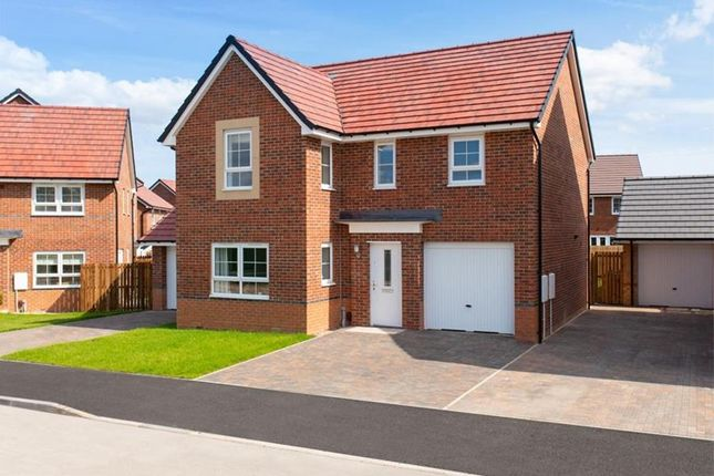 "Thumbnail Detached house for sale in ""Halton"" at Rydal Terrace, North Gosforth, Newcastle Upon Tyne"