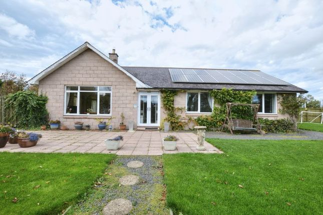 Thumbnail Detached house for sale in South Road, Belford, Northumberland