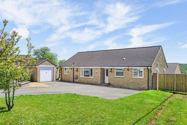 Thumbnail Detached bungalow for sale in Manston Road, Sturminster Newton
