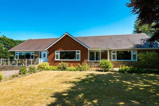 Thumbnail Detached bungalow for sale in Ridley Lane, Croston, Leyland