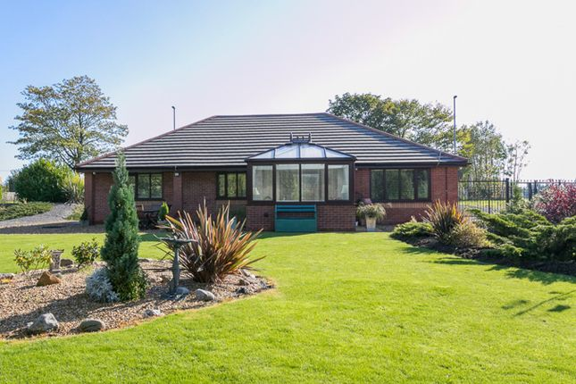 Thumbnail Detached bungalow for sale in Heywood Old Road, Birch